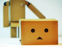 A Head (willycoolpics.) Tags: robot action cardboard figure picnik danbo revoltech danboard