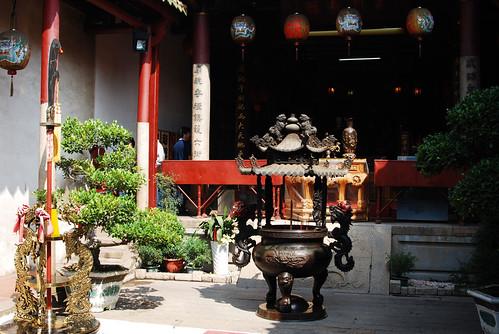 台南黑面琵鷺GO-201002036