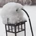Snow-Day-2-12-10-4.jpg