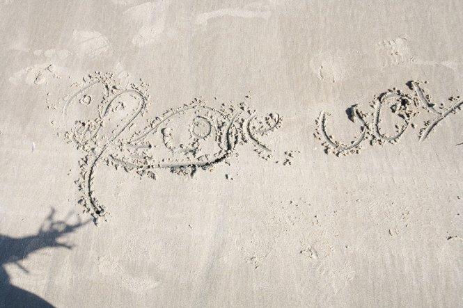 Shores8
