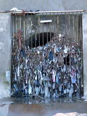 Arts plastiques (Corinne Bguin) Tags: morocco pollution maroc casablanca plage plasticbags environnement environement sacsplastiques