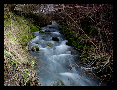 View from a bridge. (forbesimages) Tags: bridge nature water canon river landscape flow scotland stream fife explore burn loch birnie explored barryforbes forbesimages