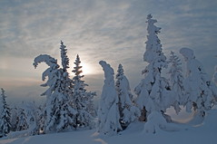 Wintersun on Liatoppen, Blefjell, Norway (Odd :-)) Tags: bildekritikk