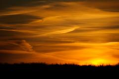 cloudy night. (vladLitvak) Tags: sun black tree yellow night clouds nikond70 tamron70300 cloudynight vladlitvak