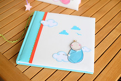 Newborn photo album