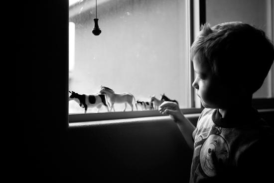 Trevin-Window-7