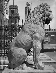 The Piraeus Lion, Venice, Italy