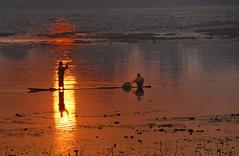 Into the light (Tati@) Tags: light red anna sun water reflections gold dawn fishermen myanmar inlelake tati spazio artofimages annatatti bestcapturesaoi bestofmywinners coth5 elitegalleryaoi