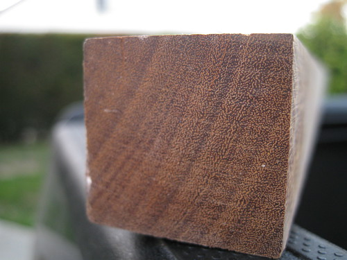 end grain of free hardwood boards rescued from trash