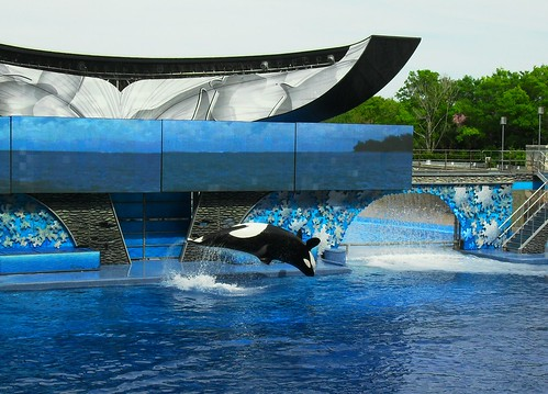 sea world 140