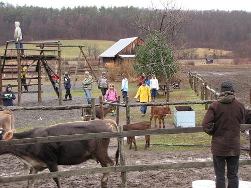 farm playground 5