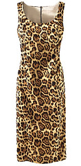 cheetah dress, clothesline, fashion blog