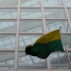 Yellow & green (Rob Verhoeff) Tags: green yellow canon geotagged groen flag denhaag powershot geel thehague stadhuis gemeentehuis vlag sgravenhage cityhal hofstijl 590is geo:lon=431672 geo:lat=52077445
