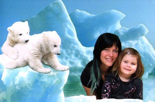 Fotomontage mit Eisbären