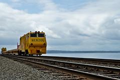 Herzog (N.Firmani) Tags: seattle windows sky water yellow train bucket track horn herzog engineer excavator