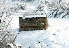 In inverno sotto la neve