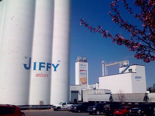 jiffy plant!