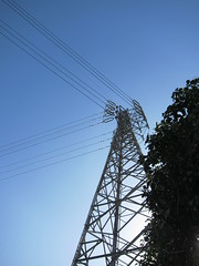 The Pylon