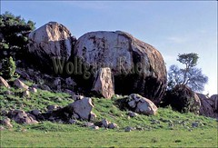 10006689 (wolfgangkaehler) Tags: africa rock landscape tanzania landscapes rocks african plains serengeti grassland plain grasslands rockformations rockformation eastafrica kopje kopjes grassplains serengetitanzania serengetiplain grassplain