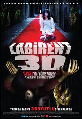 Labirent: XpanD 3 Boyutlu (2010)