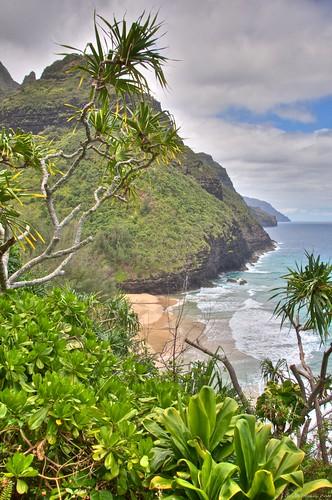 kauai2010 129 (1)