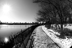 NYC (tao17) Tags: york city nyc newyorkcity winter sky urban usa newyork nature america nikon holidays december unitedstates centralpark manhattan 2009 d60 nikond60 photographyrocks lovelycity blackandwhiteurban