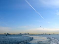 NEW YORK STORIES (5): MANHATTAN TRANSFER (Andr Pipa) Tags: nyc newyorkcity usa newyork ferry manhattan free eua statenisland novaiorque newyorkharbor 25faves riohudson riverhudson