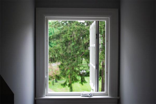 windowlawnsm