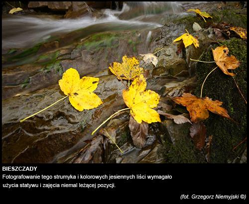 Grzegorz-Niemyjski-Krajobraz-FotoGeA2-foto-3