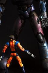The Sentinel arrives... (wammi) Tags: xmen marvellegends logan patch wolverine sentinel weaponx adamantium