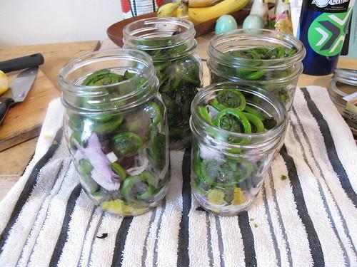 pack jars