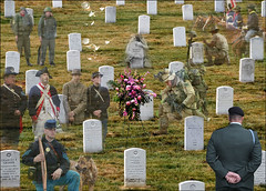 flowers wallpaper dog afghanistan history love cemetery grave graveyard arlington america dead inmemory soldier death freedom fight memorial war sad unitedstates vet flag military headstone cemetary iraq union may free honor patriotic korea historic vietnam spirits mexican buffalosoldiers spanish wreath worldwarii worldwari civilwar national american montage creativecommons download burial warrior brave service ghosts arlingtonnationalcemetery wars bouquet patriot fighting july4th veteran revolutionary memorialday warof1812 sallie courage persiangulf veteransday conflicts atease paraderest armedforeces