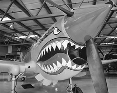 Plane Shark Mouth WW2 http://flickrhivemind.net/Tags/noseart,ww2/Interesting