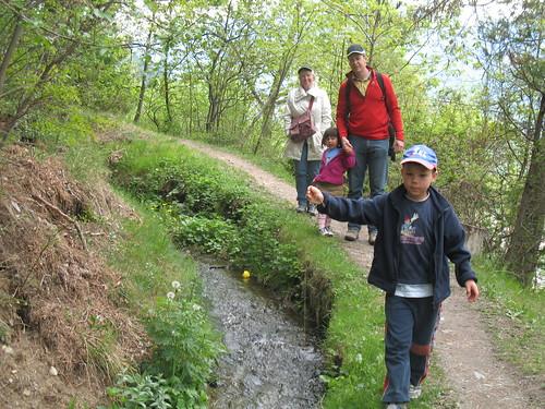Ein Teil der Wanderung führt entlang des historischen Zaalwaals