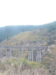 Tressel bridge (a-dinosaur) Tags: new bridge railway zealand dunedin gorge the taieri