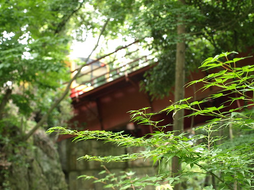 Under the tram of Iwashimizu shrine
