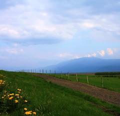 (Jaana-Marja) Tags: road flowers mountains grass fence iceland glacier finished eruption eyjafjallajökull fljótshlíð eyjafjöll itsawonderfulworld dragondaggerphoto yourwonderland