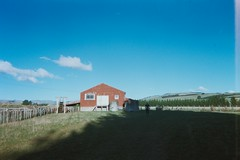 09_Woolshed