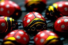 2nd take on the ladybugs (ion-bogdan dumitrescu) Tags: red white lady canon bug wrapping paper shiny chocolate shift ladybug dots tilt 90mm aluminium tse bitzi mg2779 ibdp ibdpro wwwibdpro ionbogdandumitrescuphotography
