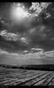 "From Oroklini (Polis Poliviou) Tags: sea summer sky people bw sun seascape hot beach nature water monochrome swimming swim airplane blackwhite sand rocks ship stones ships cyprus wave sunny environment mediterraneansea seaview thalassa polis zypern shootingstar larnaka chypre brilliantphoto dekelia seaspace lovecyprus shining★star afiap mediterraneanisland κυπροσ λαρνακα superaward ""flickraward"" poliviou polispoliviou notwithoutmycamera artistefiap πολυσ πολυβιου nosinmicámara οροκλινη cyprusinyourheart ©allrightsreservedbypolispoliviou οroklini δεκελεια"