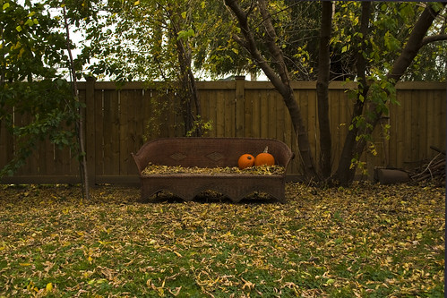 Pumpkins on Wicker Sofa
