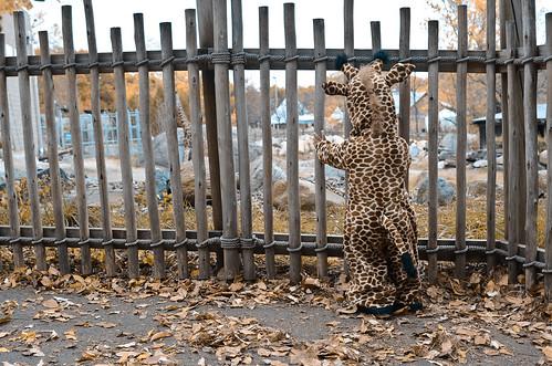 halloween-zoo-portraits-2