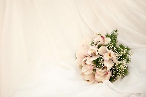 フリー写真素材, イベント・行事・レジャー, 結婚式,