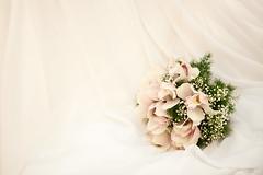 [フリー画像] イベント・行事・レジャー, 結婚式, 201011211700