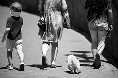 Madrid. (Jose_Pérez) Tags: madrid street streetphoto urban city blackandwhite blancoynegro perro dog familia family byn bw