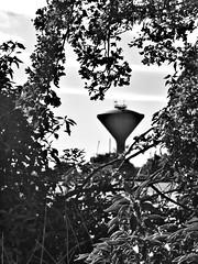 Upton Water Tower (the_gonz) Tags: uptonwatertower watertower upton pontefract beacon tower yorkshire landmark village uptonpontefract life