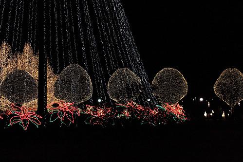 20091215_Nashville_Christmas0005