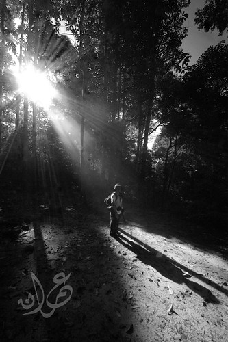 Ray of Light @ Sungai Pisang Waterfall
