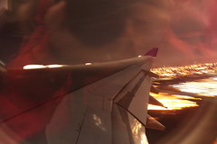 Motion and Refection (Passenger32A) Tags: california travel usa window plane airplane flying losangeles inflight airport aircraft flight wing domestic thai airbus windowview lax winglet windowseat veiw thaiairways transpacific staralliance a340500