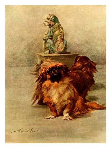 017-Pekines-The power of the dog 1910- Maud Earl